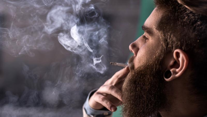 de ce fumeaza lumea iarba)