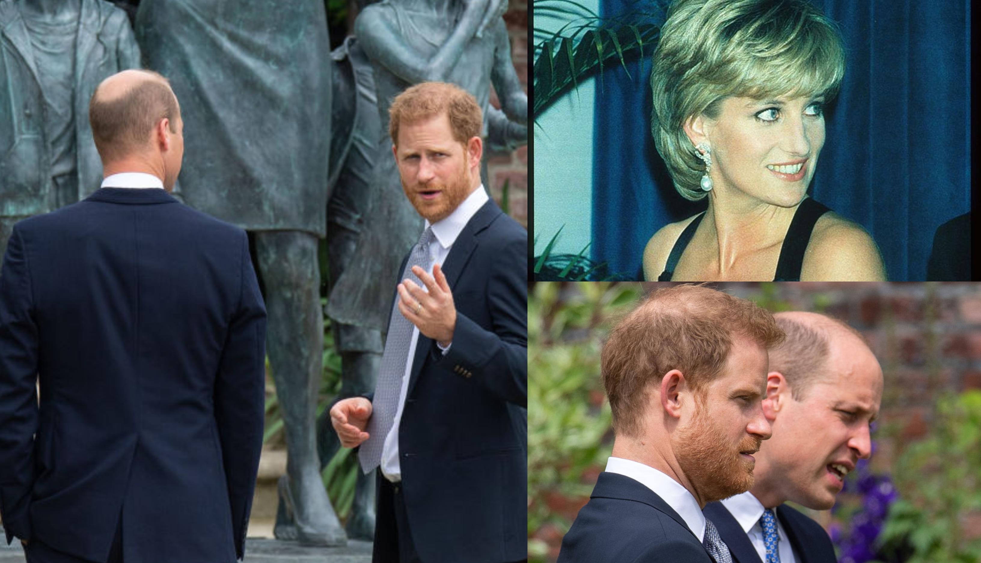 Cum arată statuia Prințesei Diana. Detaliul pe care l-au observat Prințul Harry și Prințul William când au dezvelit omagiul