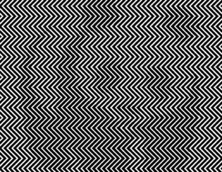 Iluzie optică virală. Găsești ursul panda din imagine? Doar cei cu privire ageră reușesc