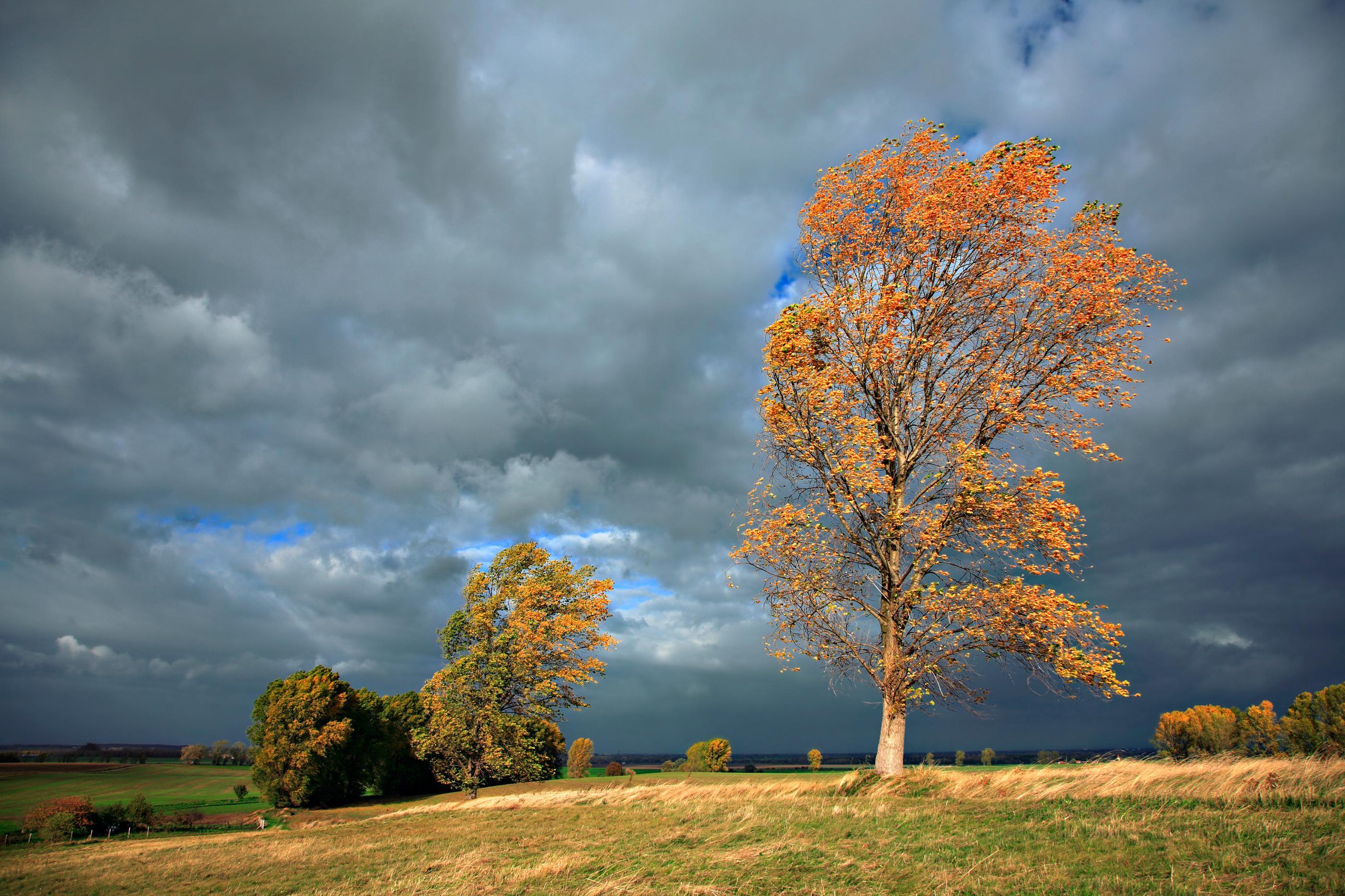De când se schimbă vremea și care sunt zonele măturate de vijelii. Prognoza meteo pentru regiunile afectate