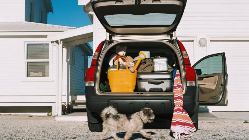 o masina cu portbagajul deschis, parcata in fata unei case, in care se vad bagajele si un caine alaturi