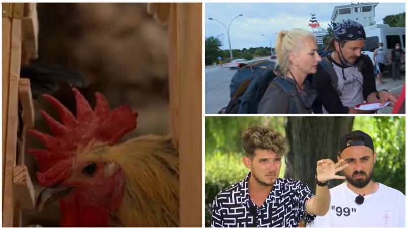 """Asia Express, 27 septembrie 2021. Concurenții au pornit la """"vânătoare"""" de găini. Cum s-au descurcat: """"Mie îmi e cam frică"""""""