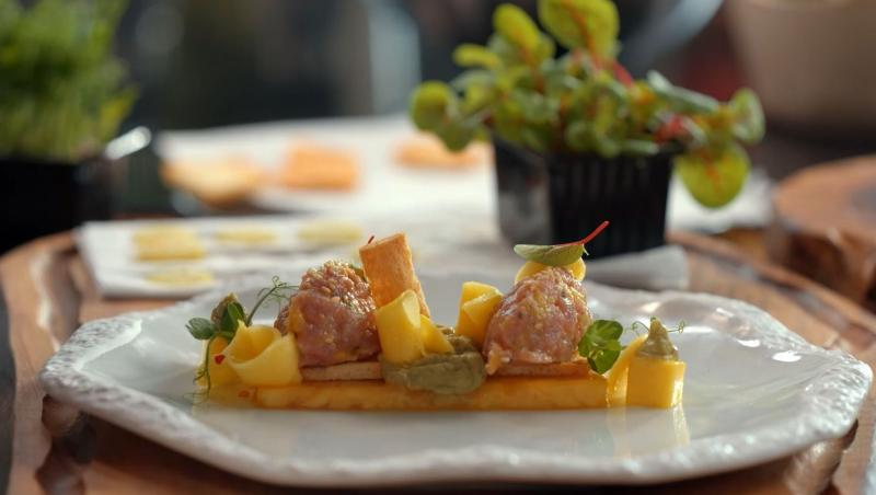 Chef Roxana Blenche a pregătit o rețetă delicioasă de ton cu tartar în episodul 2 din sezonul 2 al emisiunii Hello Chef