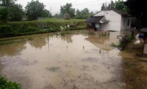 Inundatiile fac ravagii: Sute de oameni evacuati in Bosnia, stare de urgenta in Croatia