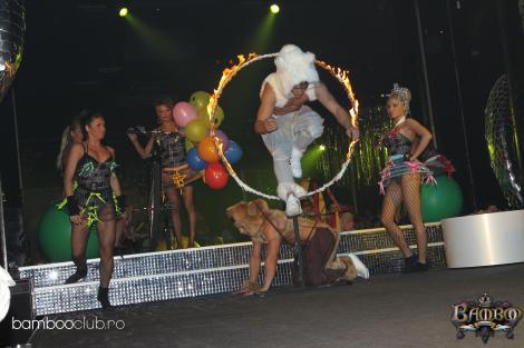 Anda Adam s-a distrat cu circul