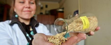 Napolitana cu zero calorii, brevetata de o cercetatoare poloneza