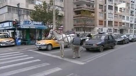 VIDEO! Dacia cu UN CAL putere, noua fita din Bucuresti!