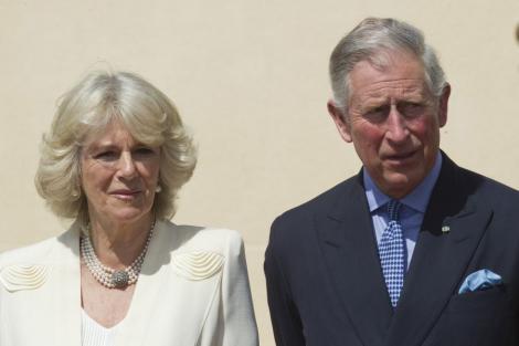 Printul Charles face apel pentru salvarea padurilor Contelui Dracula