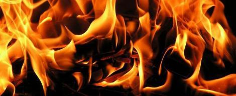 IMAGINI SOCANTE! A incendiat calul vecinului!