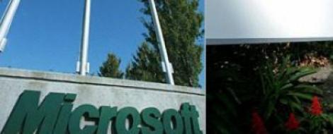 Microsoft evalueaza achizitia Yahoo. Actiunile companiei cresc cu peste zece procente