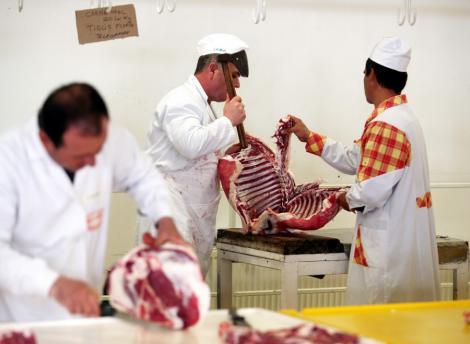 VIDEO! Carne alterata spre vanzare
