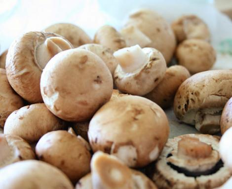 Franta: 13 romani retinuti pentru trafic de ciuperci