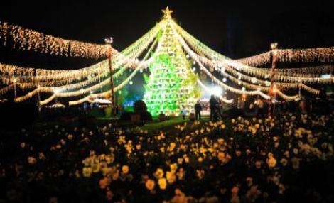 Se aprind luminile de Craciun in Bucuresti!