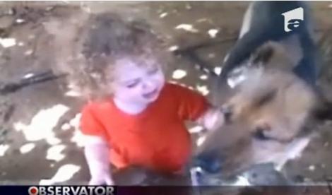 VIDEO! O fetita si un caine se cearta pe apa de la o cismea!