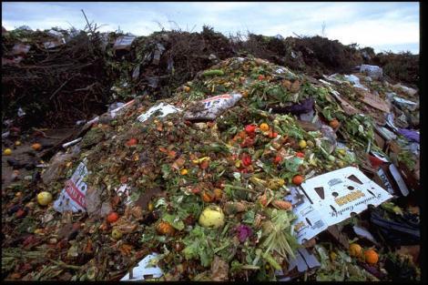 O treime din productia mondiala de alimente ajunge la gunoi