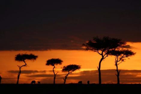VIDEO!  Kenya, destinatia ideala pentru o vacanta de neuitat