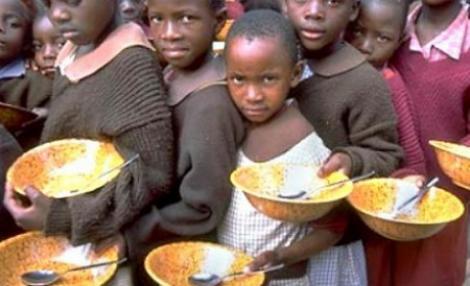 Tone de alimente sunt aruncate la gunoi, in timp ce un miliard de oameni nu au ce manca