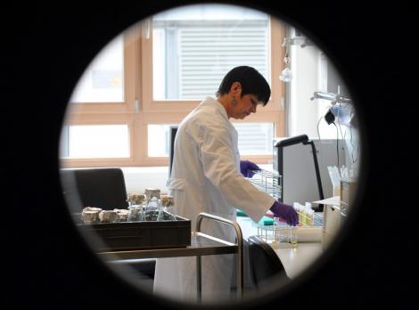 Primul caz de infectie cu bacteria E.coli, confirmat in Polonia