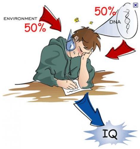 Studiu: IQ-ul nu arata istetimea