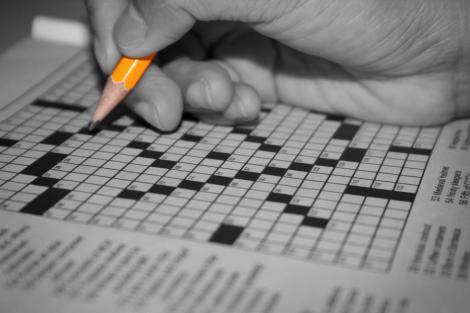 Studiu: testele de inteligenta nu arata istetimea