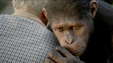 "A1.ro iti recomanda azi filmul ""Rise of the Planet of the Apes - Planeta Maimutelor: Invazia"""