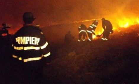 Constanta: Un incendiu puternic de miriste a izbucnit in localitatea Vadu