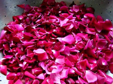 Petalele de trandafir, un remediu natural impotriva multor probleme de sanatate