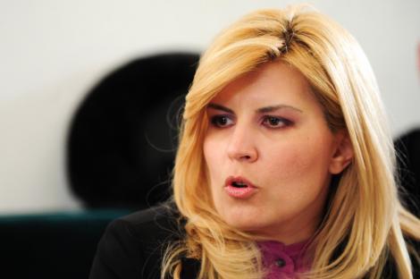 "Elena Udrea: ""PDL ar putea adopta culoarea verde in campanie"""