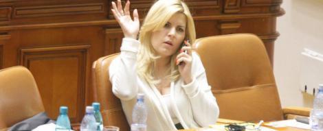 Elena Udrea: Nu mai merge cu cresteri de salarii si pensii