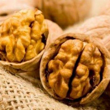 Beneficiile nucilor in alimentatie