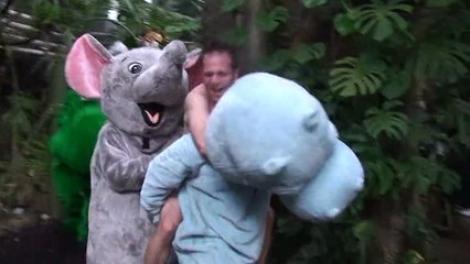 VIDEO FUNNY! O gradina zoologica a fost vandalizata de... Tarzan!