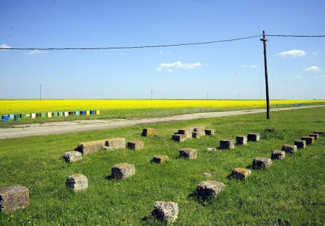 Strainii vor avea limita la cumpararea terenurilor din Romania