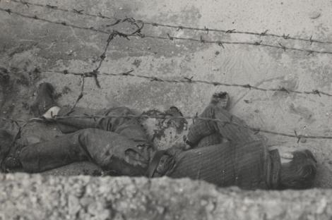Și-a dat viața pentru libertate. Peter Fechter a sângerat până la moarte după ce a fost împușcat în timp ce încerca să treacă Zidul Berlinului