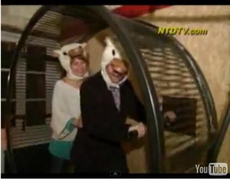 Intr-un hotel din Franta turistii traiesc precum hamsterii