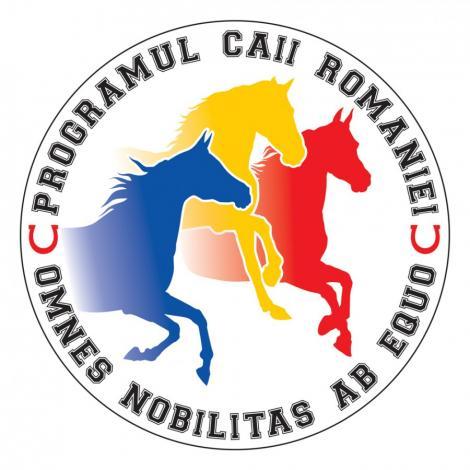 """Actorul Denis Stefan lanseaza Proiectul """"Caii Romaniei"""""""