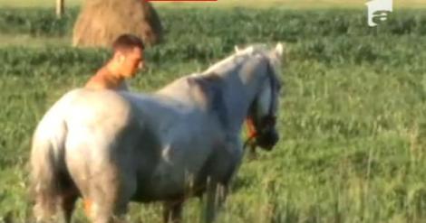 VIDEO! Cluj: Pompierii au salvat un cal blocat pe sinele de cale ferata