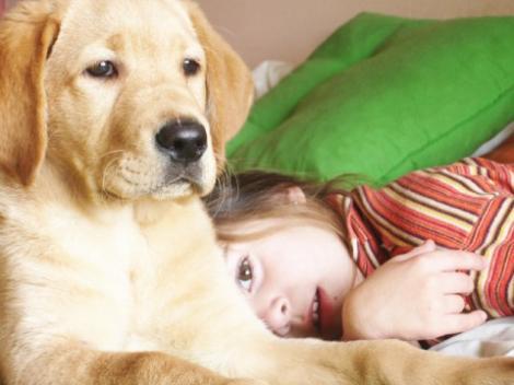 Copiii care cresc alaturi de animale de companie sunt mai sanatosi