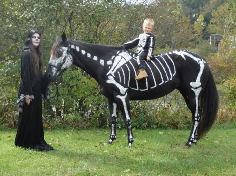 GALERIE FOTO! Un cal deghizat in schelet a facut furori de Halloween!