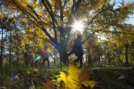 Vreme frumoasa si calda, la inceput de noiembrie: PROGNOZA METEO pentru weekend, in Bucuresti si in tara