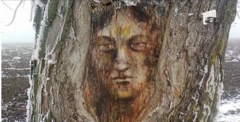 Pe trunchiul unui copac a apărut chipul lui Hristos