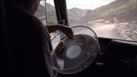 Volvo lasa un hamster sa conduca un camion – Dynamic Steering