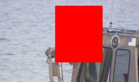 VIDEO: Au scos un ZOMBIE dintr-un lac! Cum arată MONSTRUL ce a speriat o lume întreagă