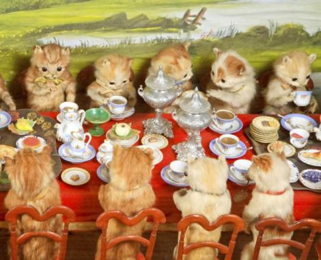 Simpatici sau înfricoșători? Bun venit în lumea în care pisicile beau ceai, iar iepurii croșetează!