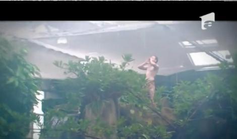 De tot râsul! Un bărbat deghizat în Tarzan a făcut furori la o grădină zoologică