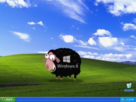 Windows 8, tot oaia neagră a Microsoft – utilizatorii Windows XP preferă Windows 7