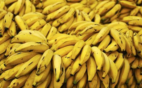 Criză de banane, în lume! O ciupercă face ravagii în recoltele din Asia și America Latină