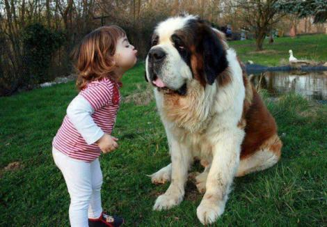 Galerie FOTO: Copiii şi câinii fac un cuplu de nădejde! Cele mai tari şi emoţionante imagini de pe internet
