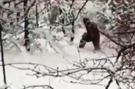 Se plimbau prin pădure și au descoperit asta! Imaginile sunt incredibile, legenda chiar există!