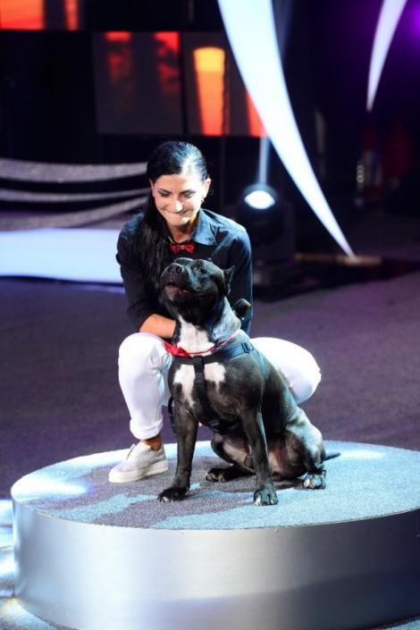 Ham Talent! Rocky, primul câine care cântă: își alege singur repertoriul și face vocalize