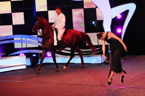 Moment de magie. Sultan, calul dansator a lăsat juriul fără cuvinte!